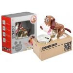 Krājkasīte HUNGRY DOG light brown 43516
